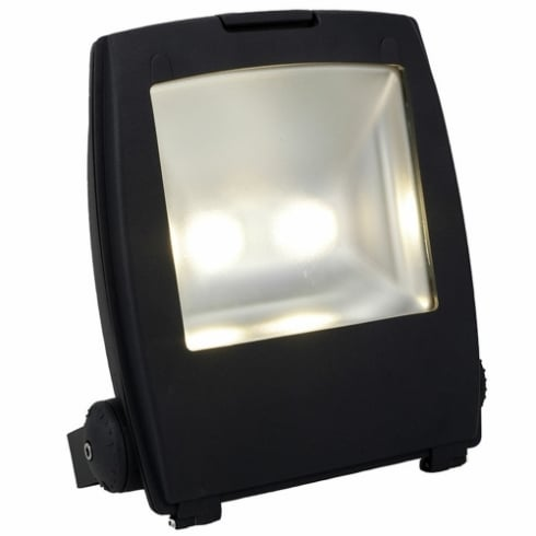 Ansell Mira 100W LED Floodlight